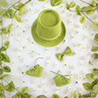 Special set for newborn photography - beautiful fresh green photo prop for baby boys.